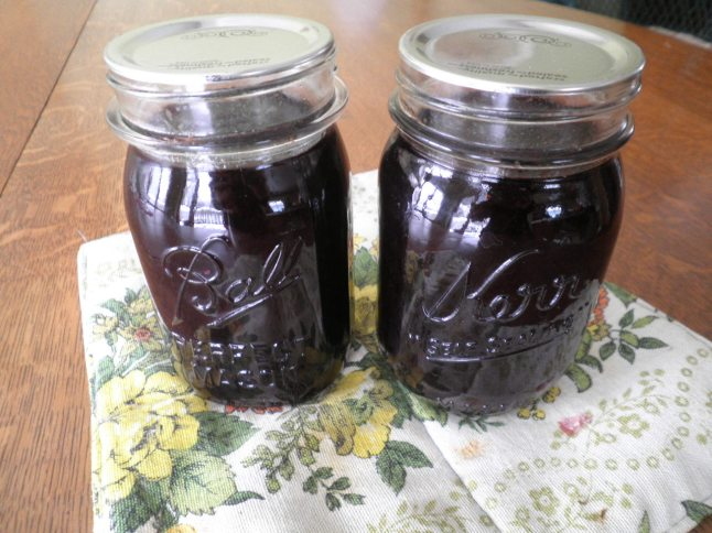 Spiced Grape Syrup